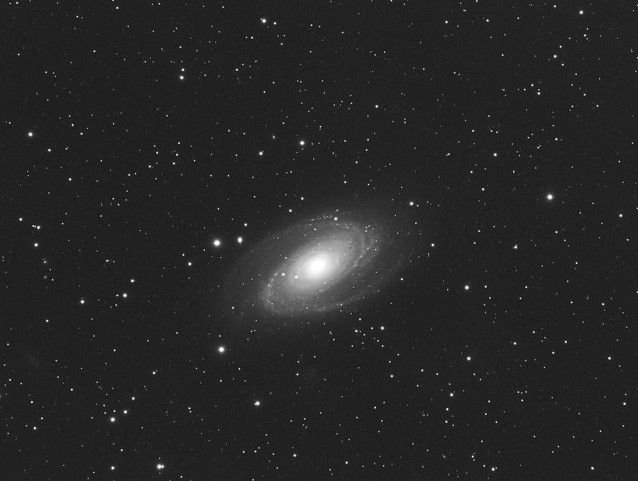 m81_copyadd4_median3_ddp_mf_b